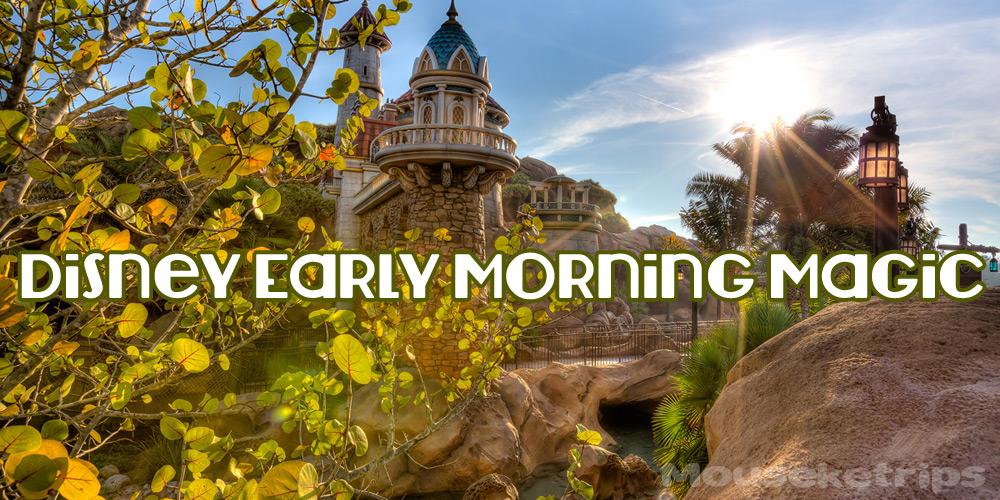 early morning magic