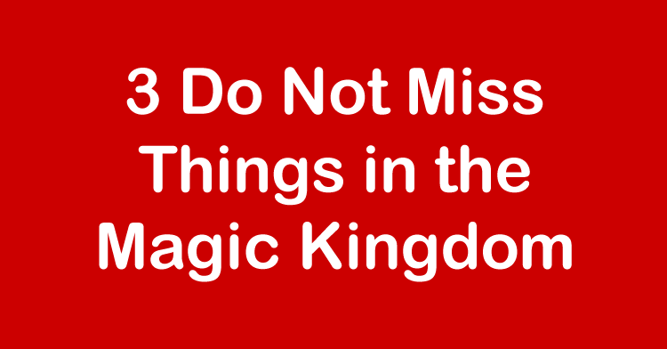 do not miss magic kingdom